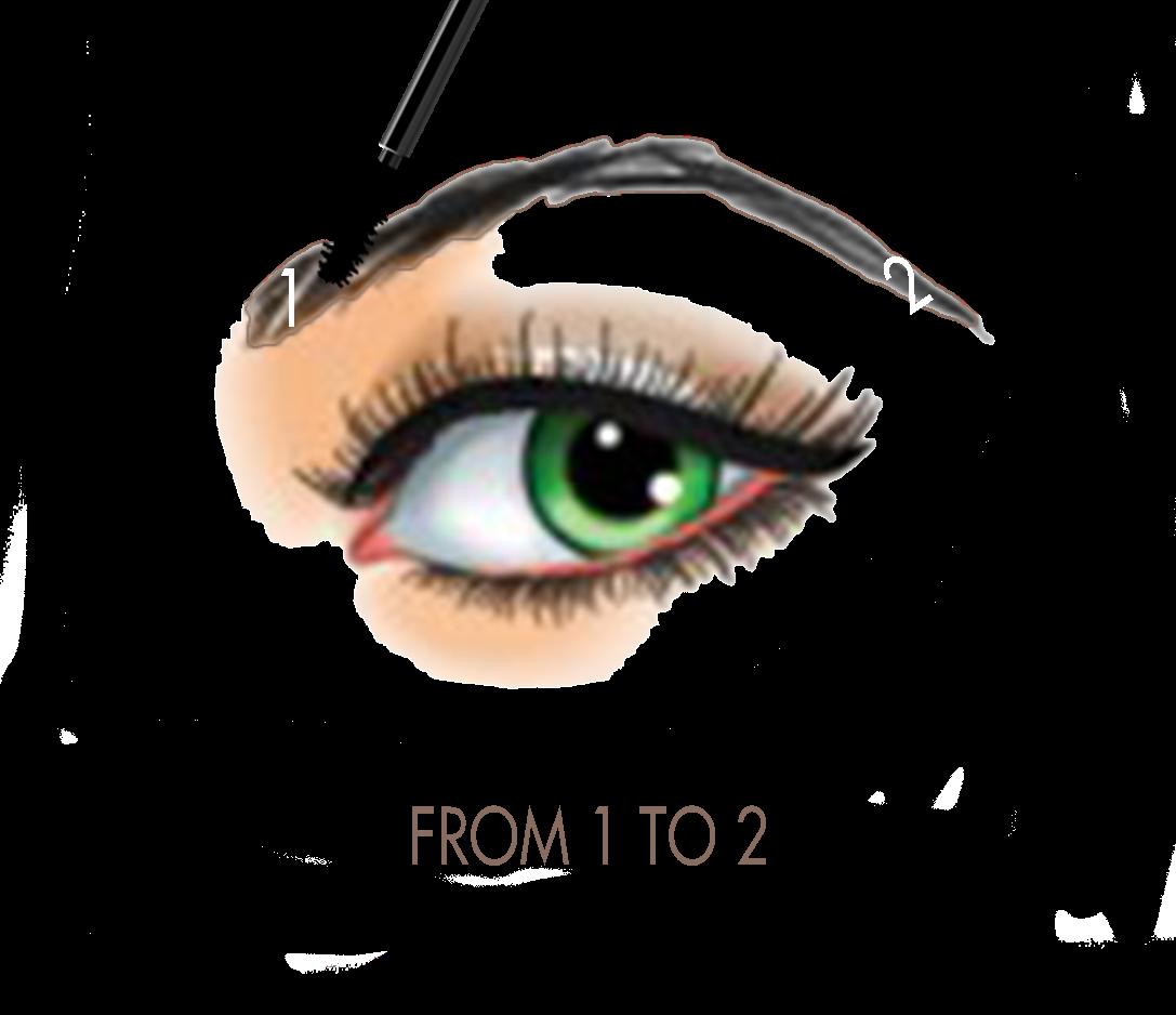 Xhiaarrieta how to achieve. Eyelashes clipart eyebrow threading