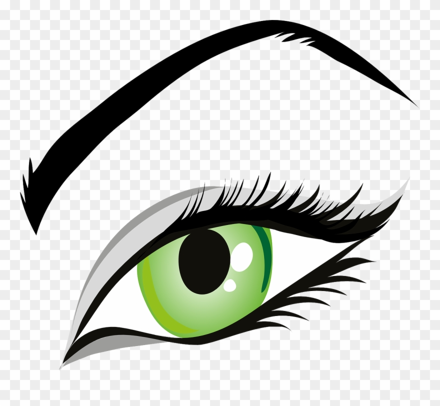 Eyebrow clipart eyelid. Eye green eyes iris