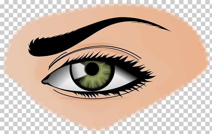 Eyebrow clipart eys. Beauty woman eyes transparent