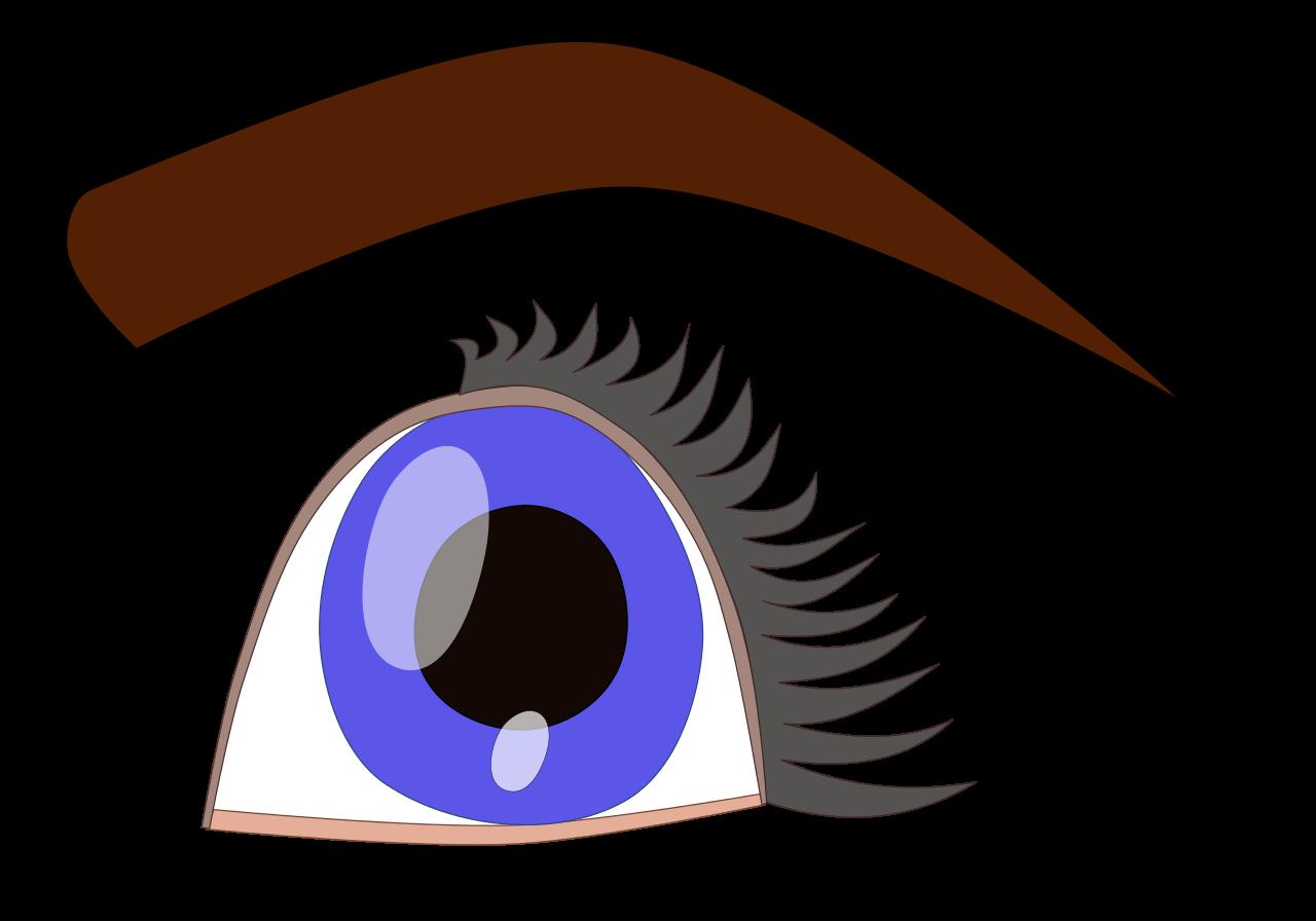 Eyelash clipart illustration. File eye svg wikipedia