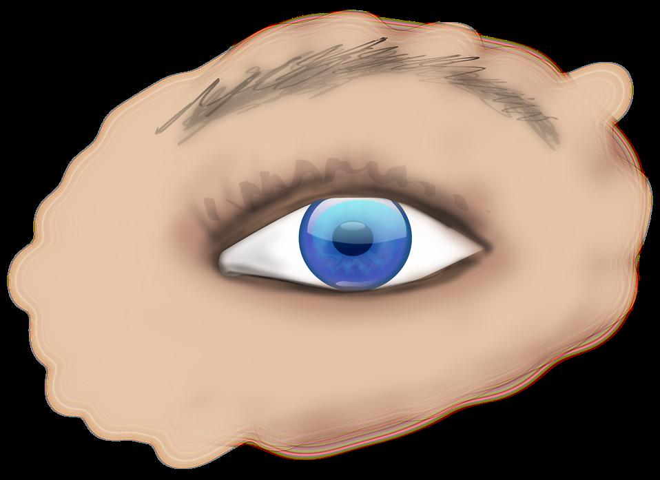 Free stock photo illustration. Vision clipart human eye