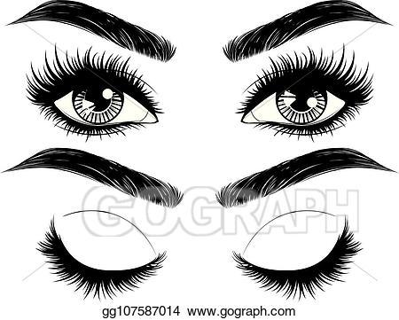 Vector art eyes with. Eyebrow clipart long eyelash