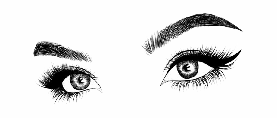 Eyebrow clipart long eyelash. Picture and free png