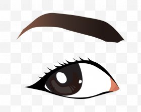 Eyebrow clipart part eye. Images png free download