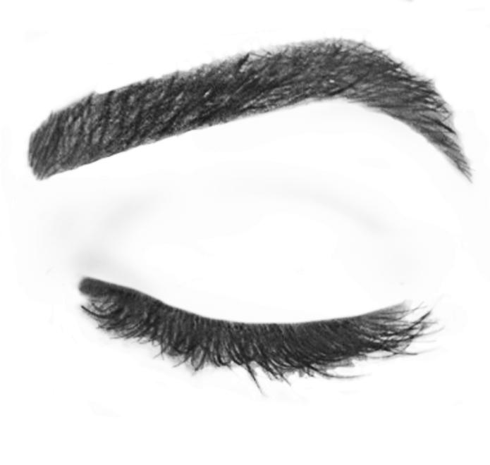 Eyebrows cliparts zone . Eyebrow clipart thick eyebrow