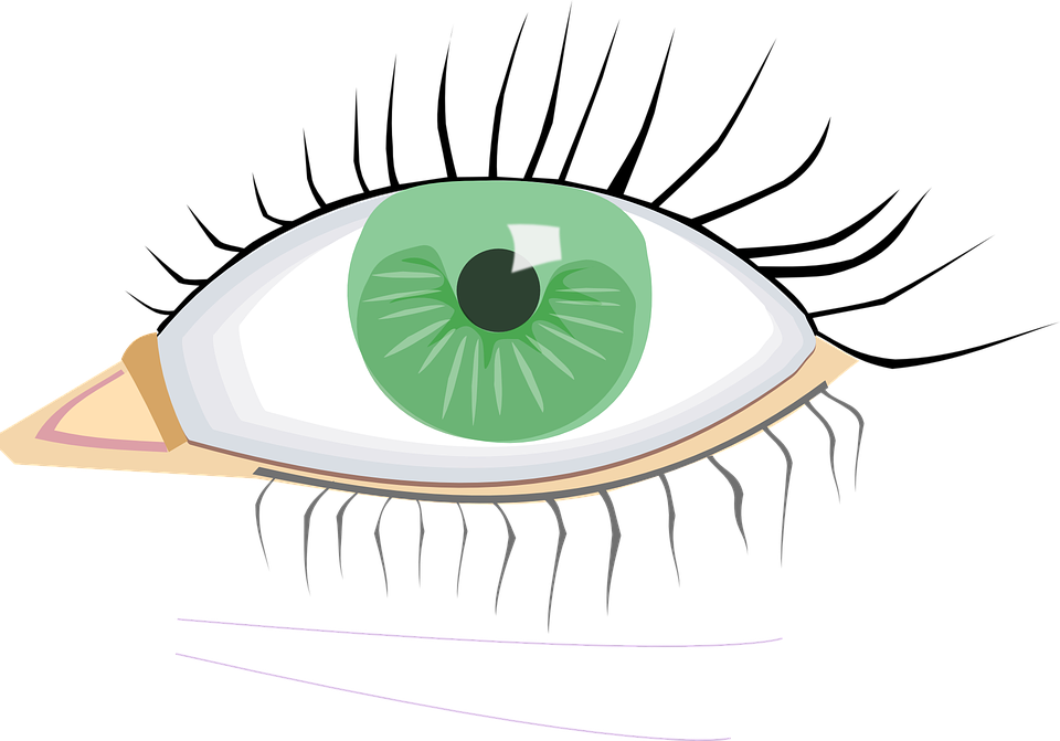 Collection of lashes cliparts. Eyelash clipart animated