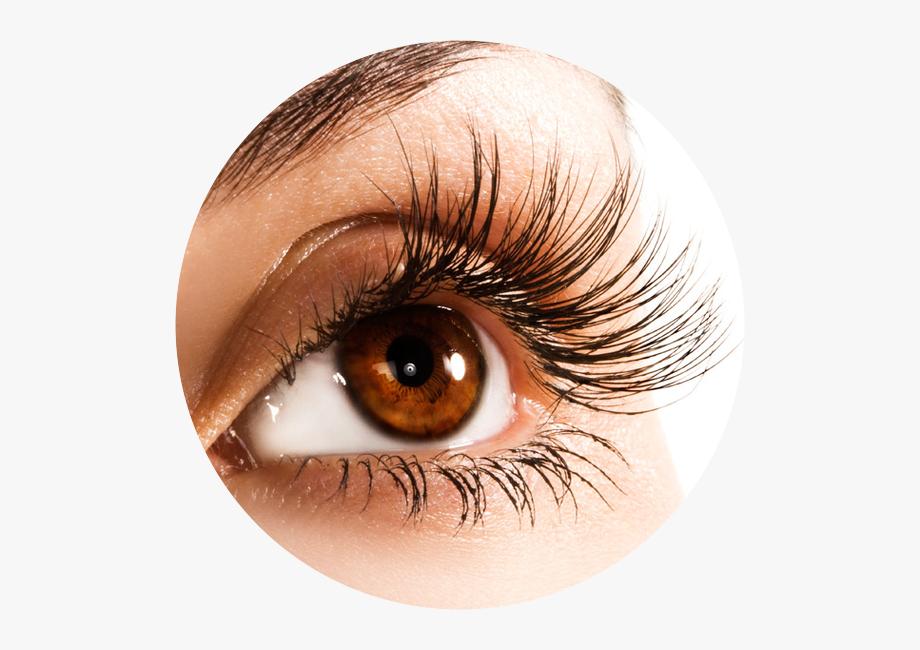 Extensions london ontario . Eyelash clipart bottom