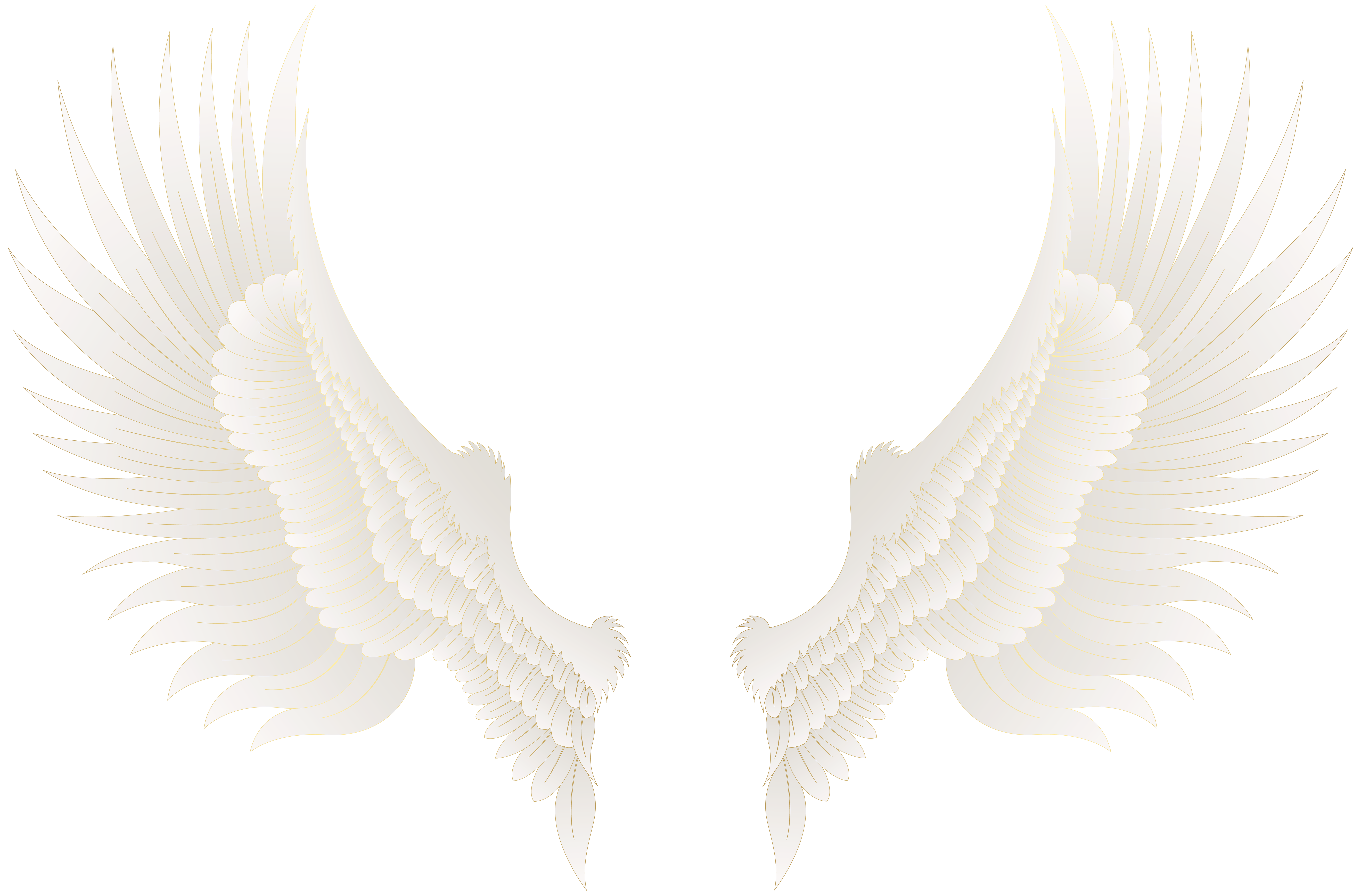 Eyelash clipart gold. White wings png clip