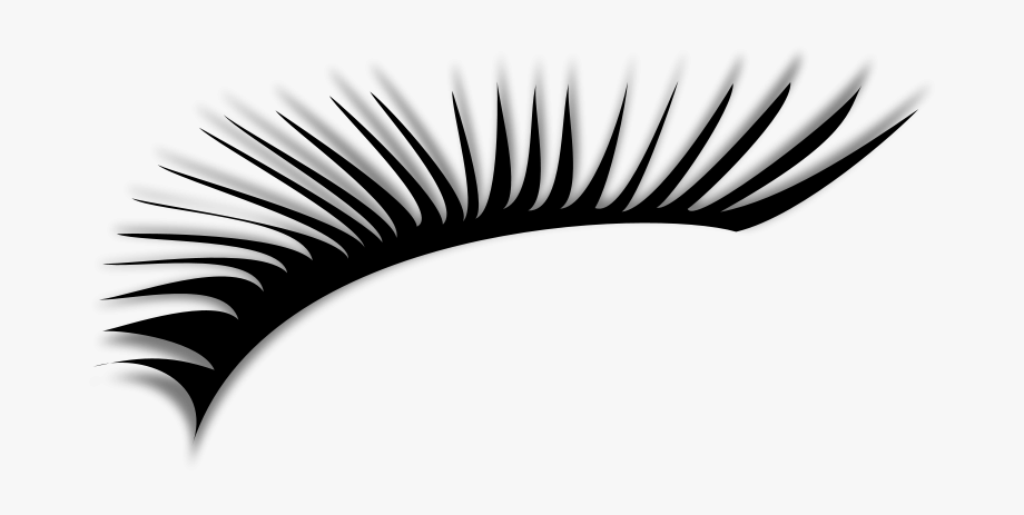 Png free cliparts on. Eyelashes clipart clip art