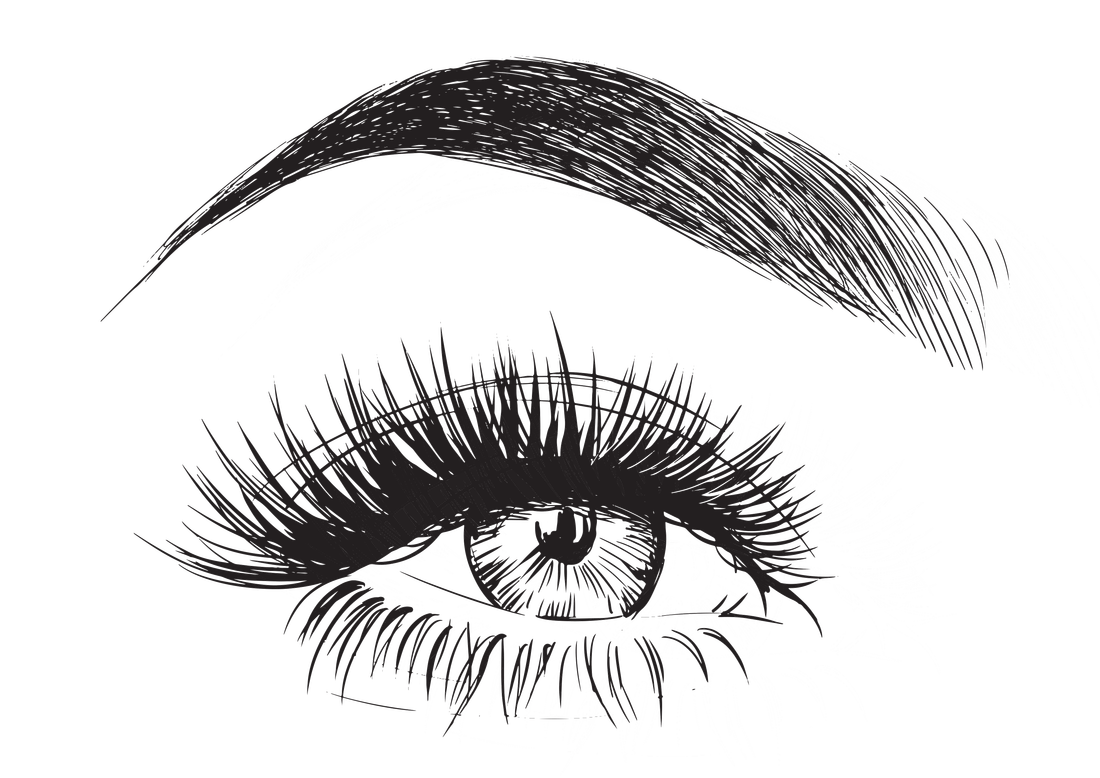 Eyelashes clipart perfect eyebrow. Transparent best for you