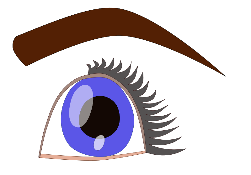 Blue eyes eyeball pencil. Eyelash clipart vector