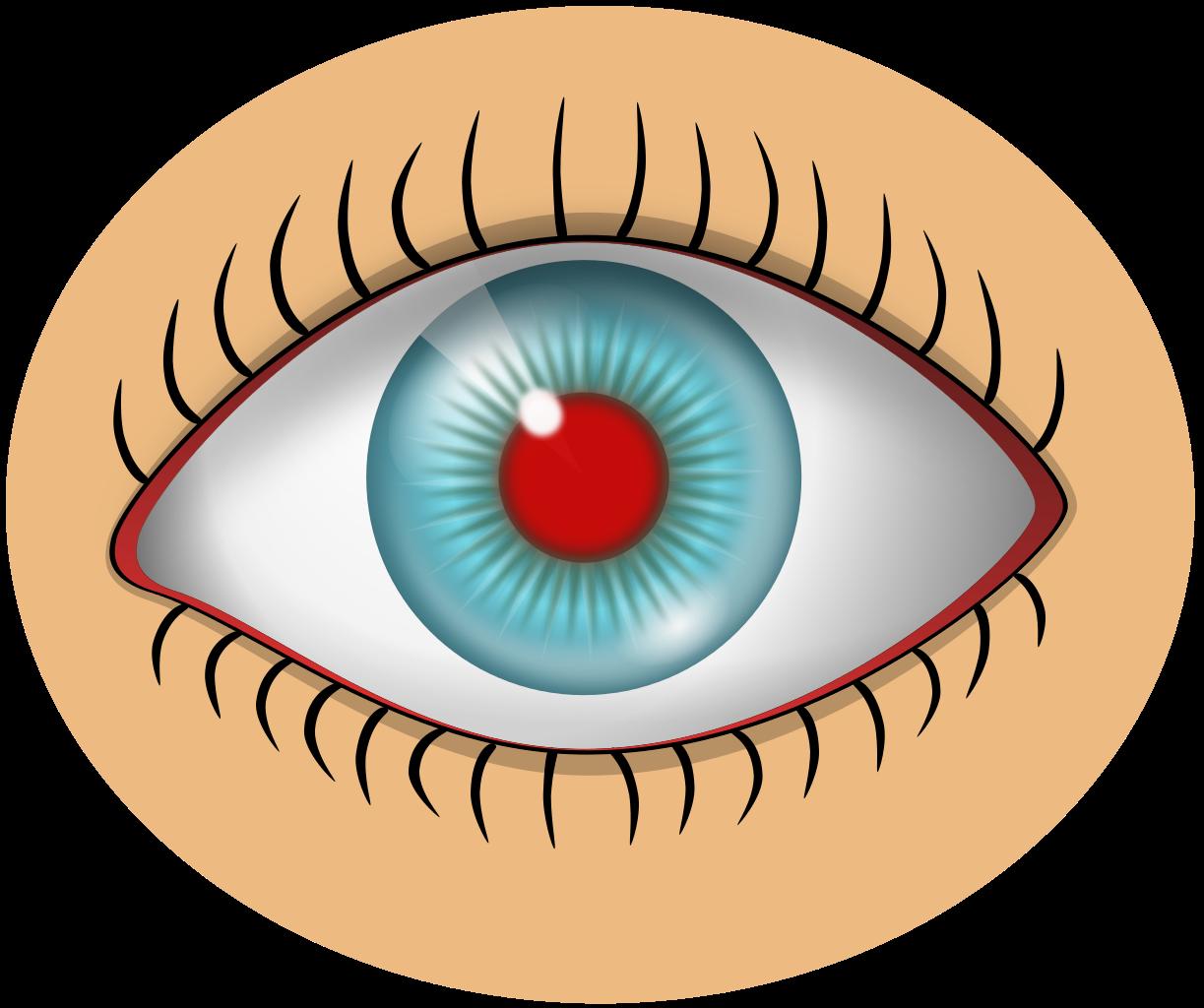 File red svg wikimedia. Eyelash clipart women's eye
