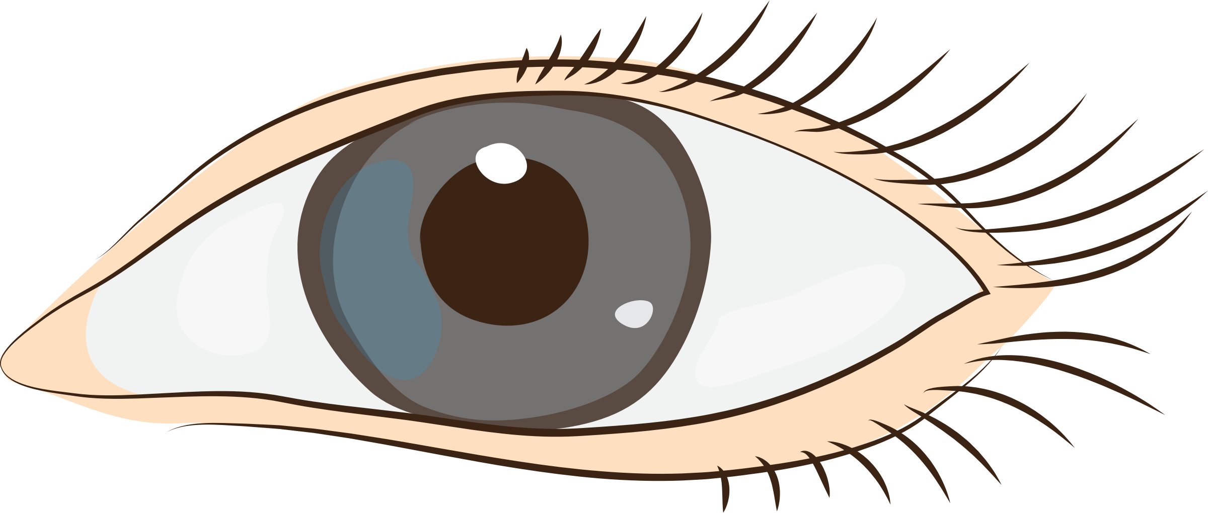 Stye blepharitis eye transprent. Eyelashes clipart eyelid