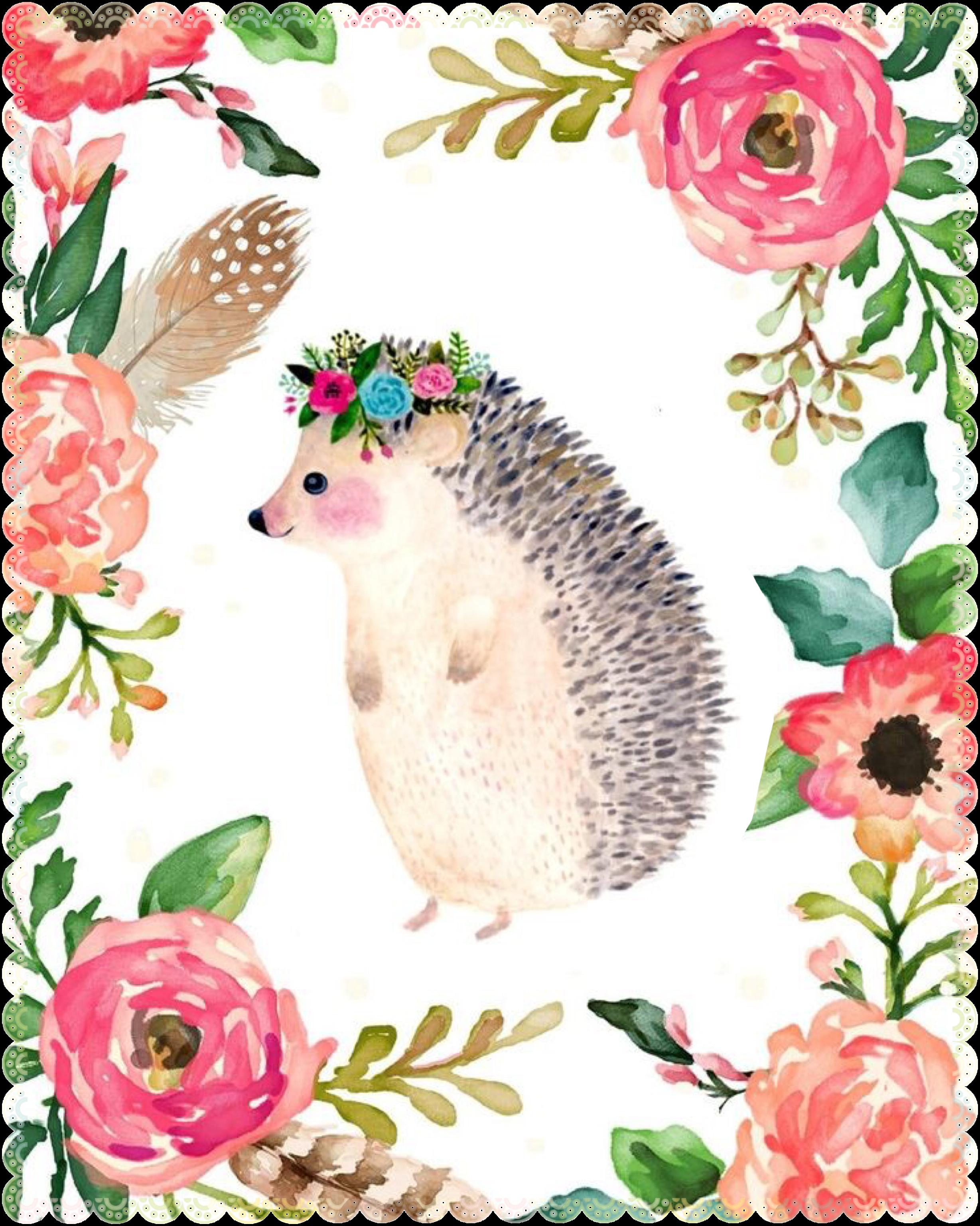 Hedgehog clipart watercolor. Pin by alba rivera
