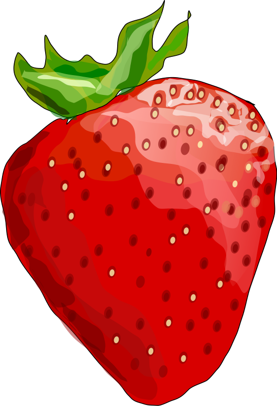 Strawberry forty three isolated. Berries clipart transparent background