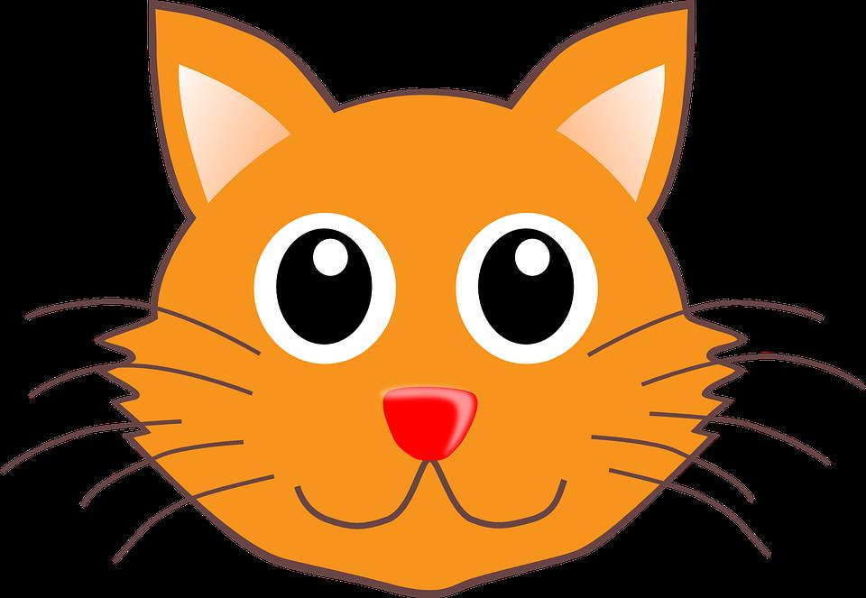 Cute cat shop of. Face clipart grandmother