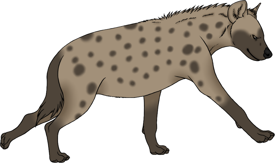 Png images free download. Head clipart hyena