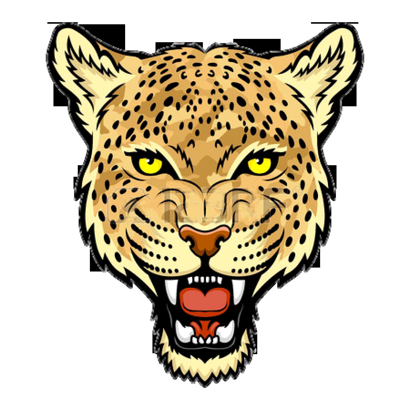 jaguar clipart mammal animal