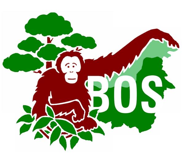 Face clipart orangutan. Those who care borneo