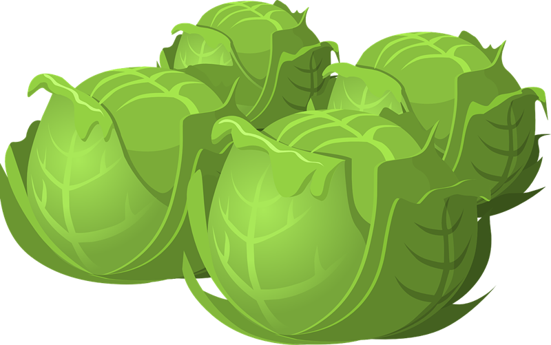Free cabbage cliparts download. Face clipart vegetable