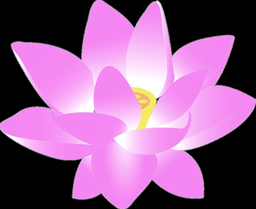 Flowers clipart cartoon. Pink flower shop of