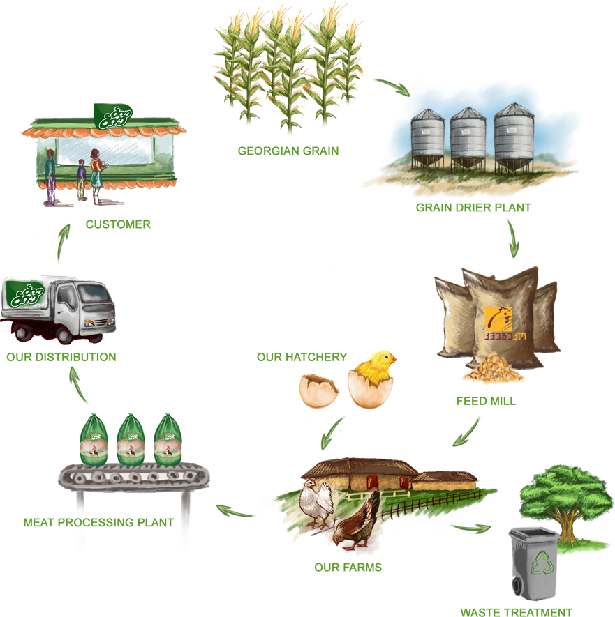 Biu about biobio our. Factory clipart meat factory