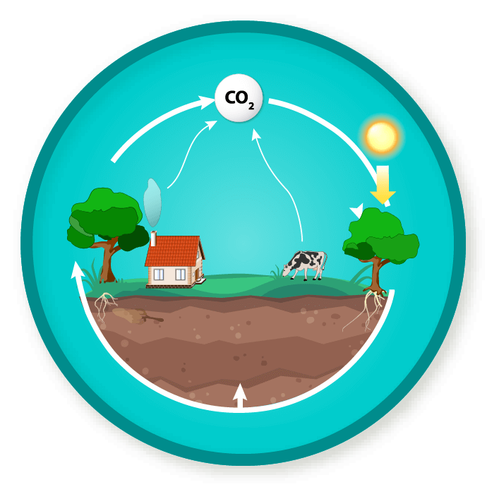 Wittywe win a badge. Factory clipart carbon emission