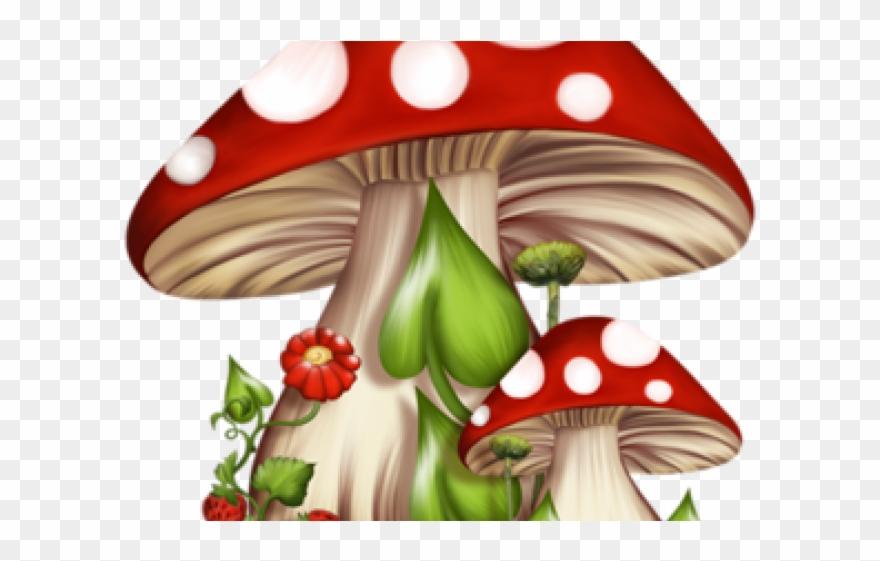 Gnome alice in wonderland. Mushrooms clipart fairy mushroom