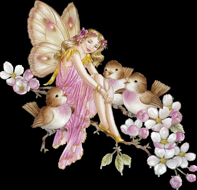 Shirleybarber fairies pinterest fairy. Lights clipart barber
