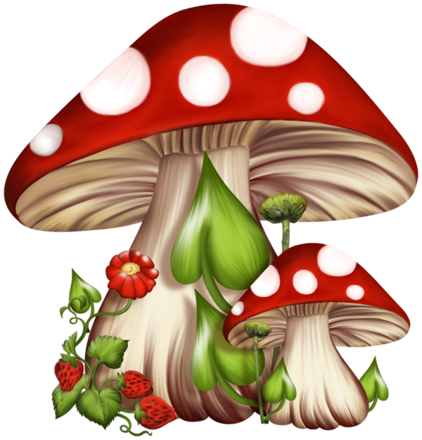 Toadstools are linked to. Mushrooms clipart sweet home