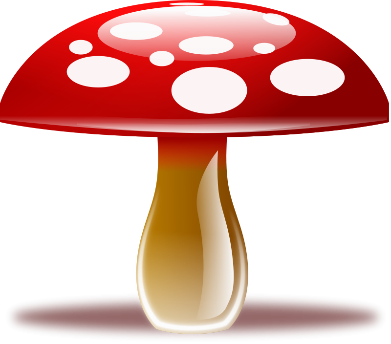 Mushroom free gnomes elves. Fairies clipart toadstool