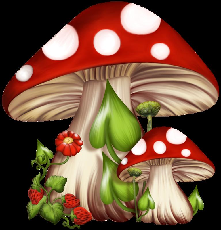 Mushrooms clipart fairy mushroom.  pinterest clip art