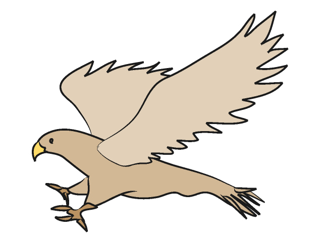 Falcon clipart. Cute