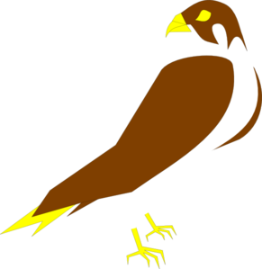 Clip art at clker. Falcon clipart