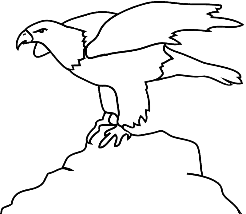 Rock clipart outline. Bald eagle drawings on
