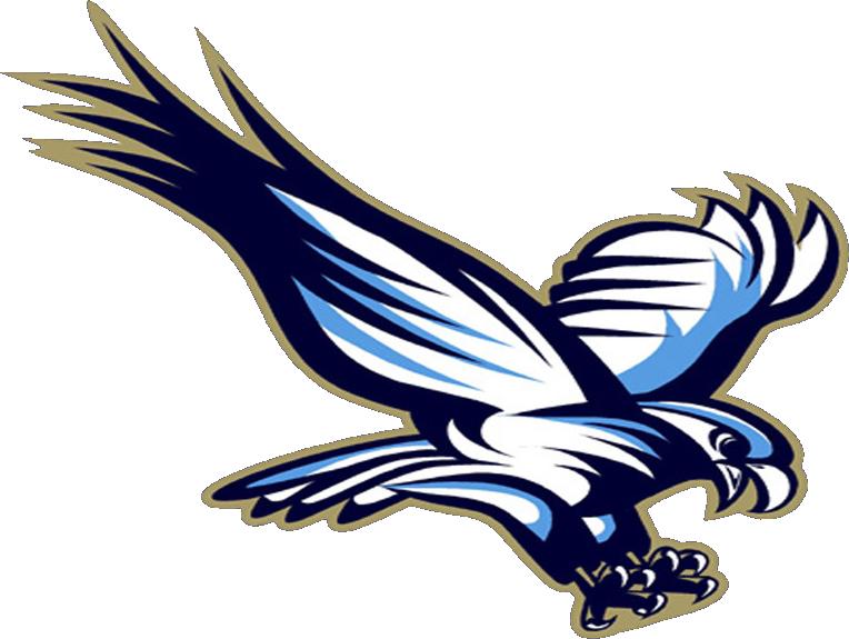 Falcon blue falcon