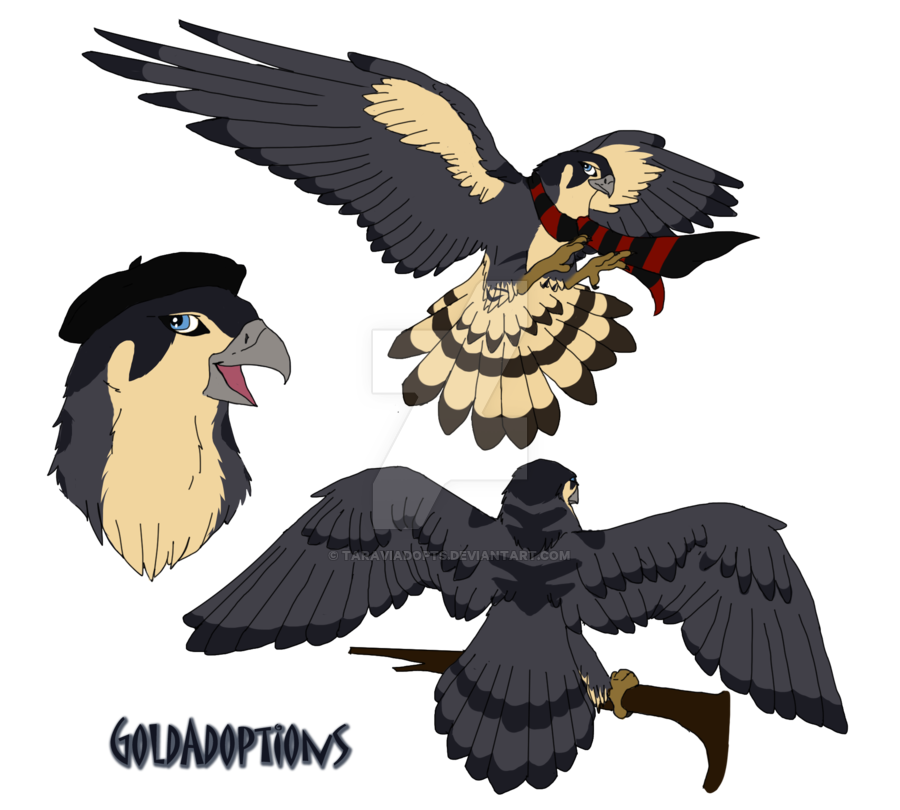 Peregrine for kaylin by. Falcon clipart chibi