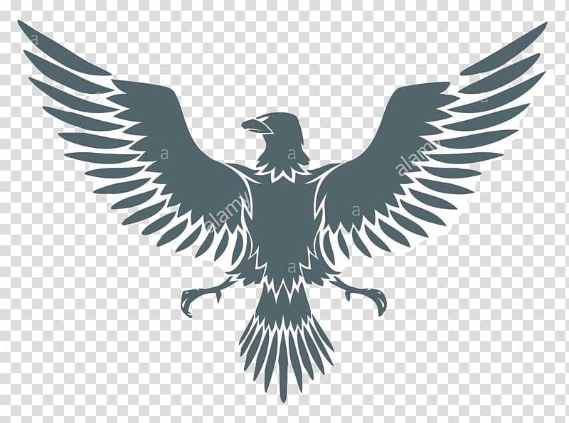 Falcon clipart coat arm. Of arms eagle transparent
