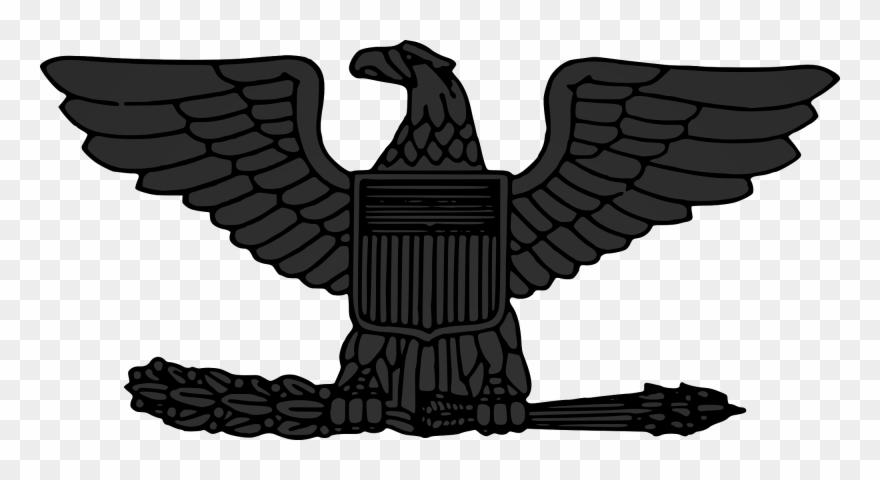 Us colonel rank insignia. Falcon clipart creative