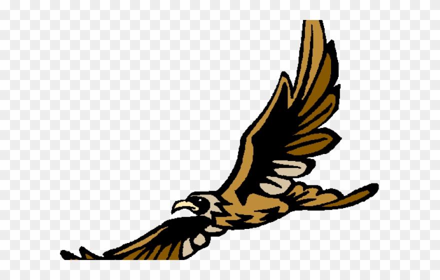 Peregrine soaring amelia earhart. Falcon clipart creative