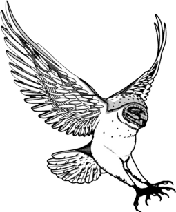 Fear clipart drawing. Owl clip art of