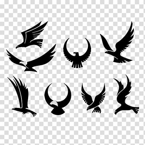 falcon clipart eagle