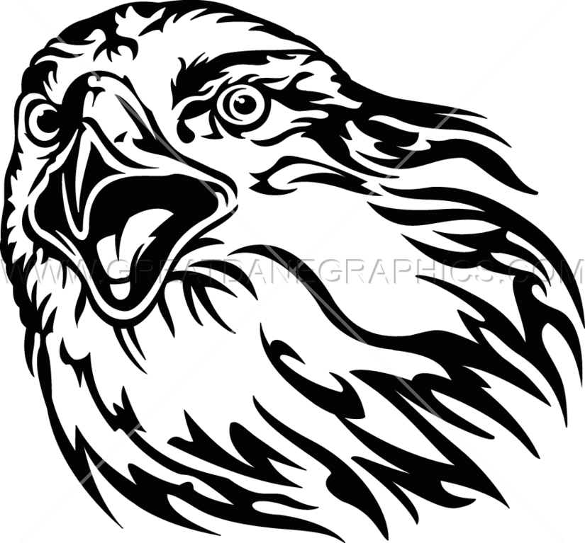 Head drawing at getdrawings. Falcon clipart face