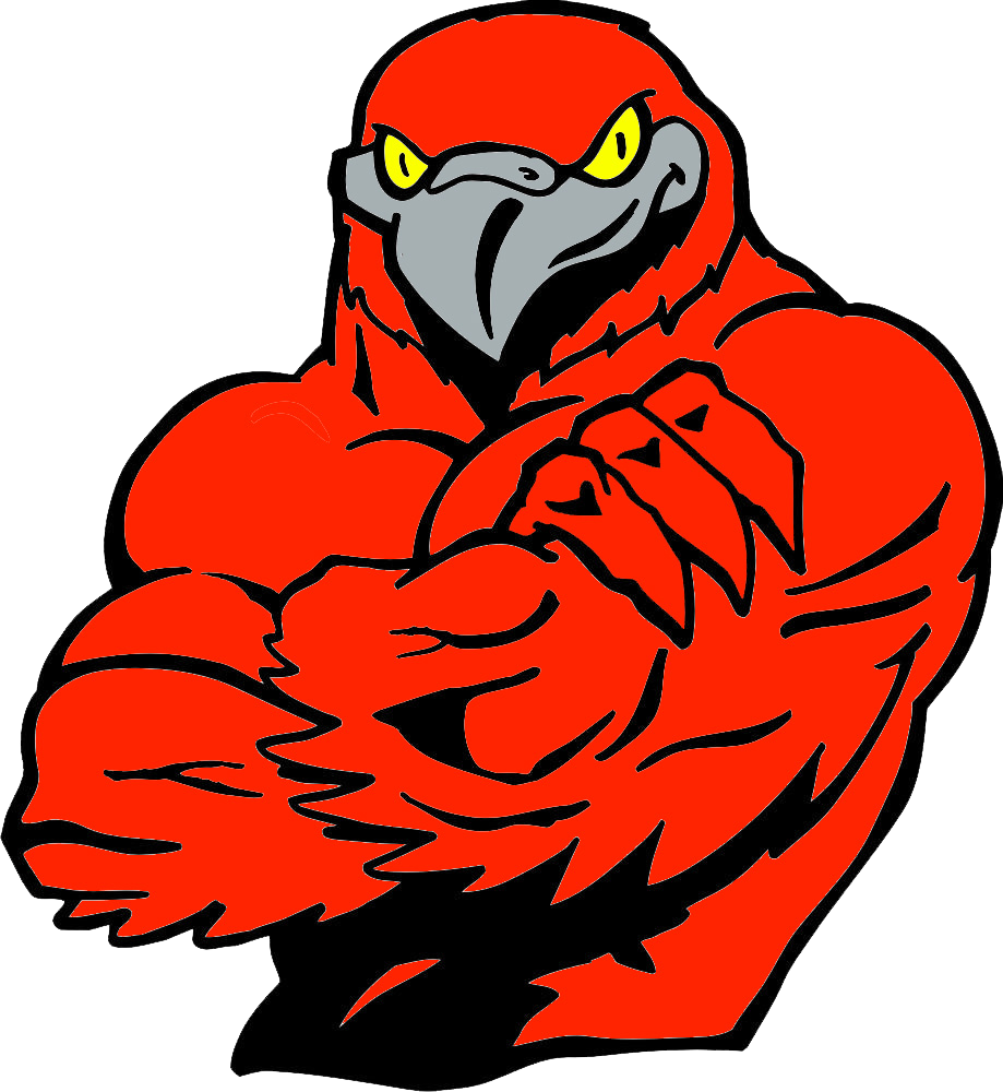 East river team home. Falcon clipart falcon football