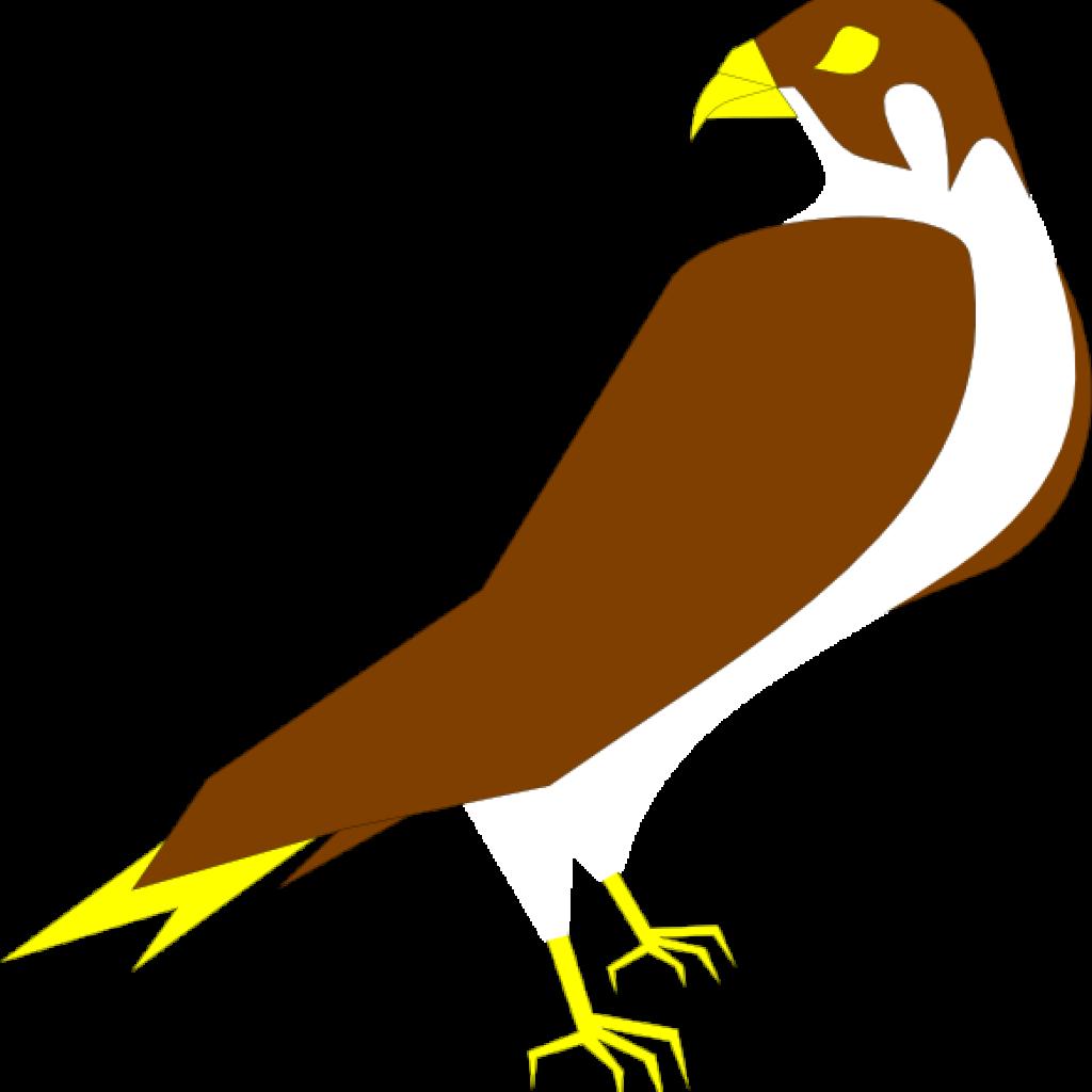 huge freebie download. Falcon clipart falcon head