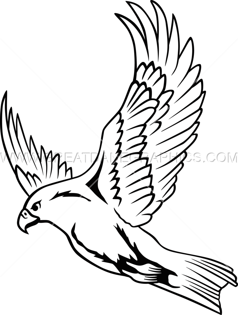 Falcon clipart flying falcon. Line drawing at getdrawings