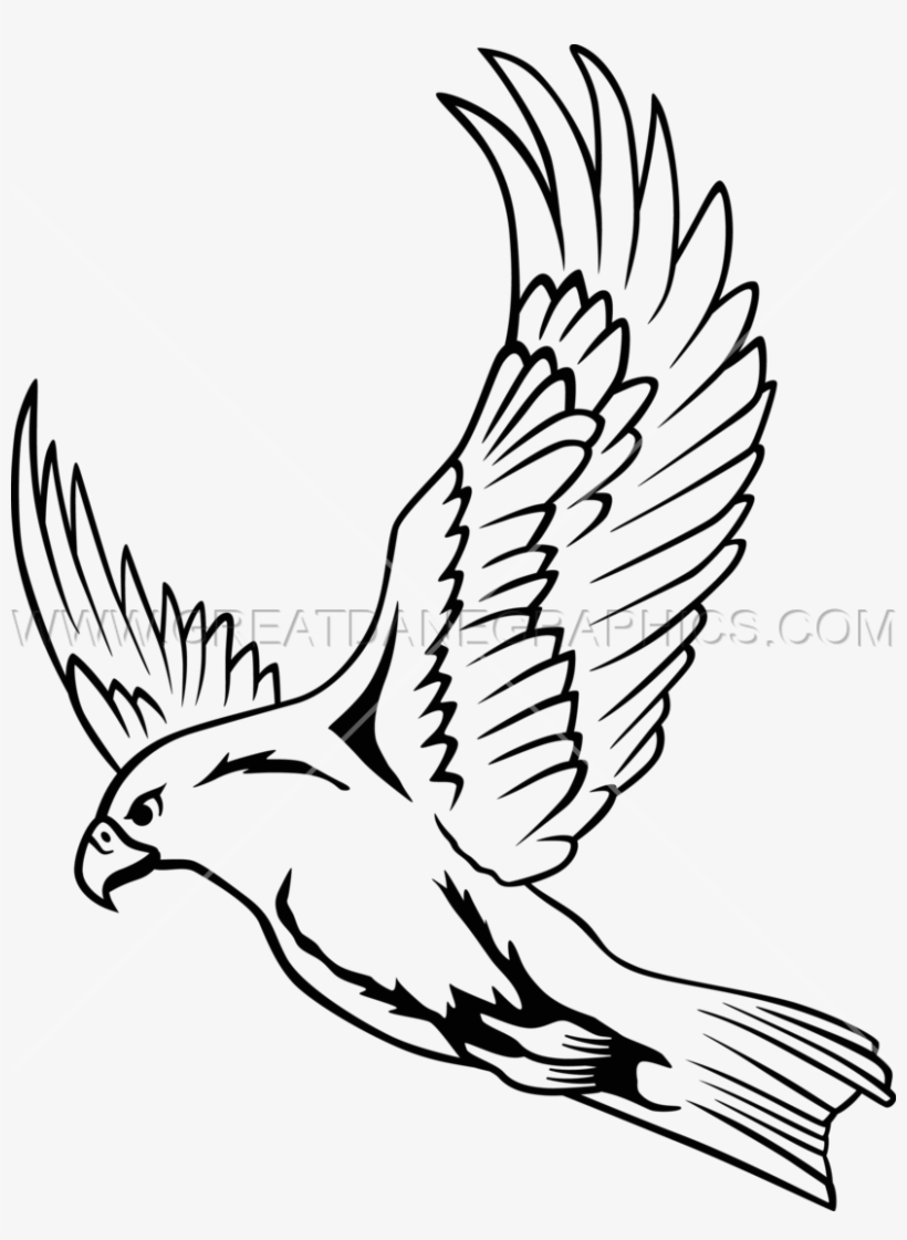 Falcon clipart flying falcon.  collection of drawing