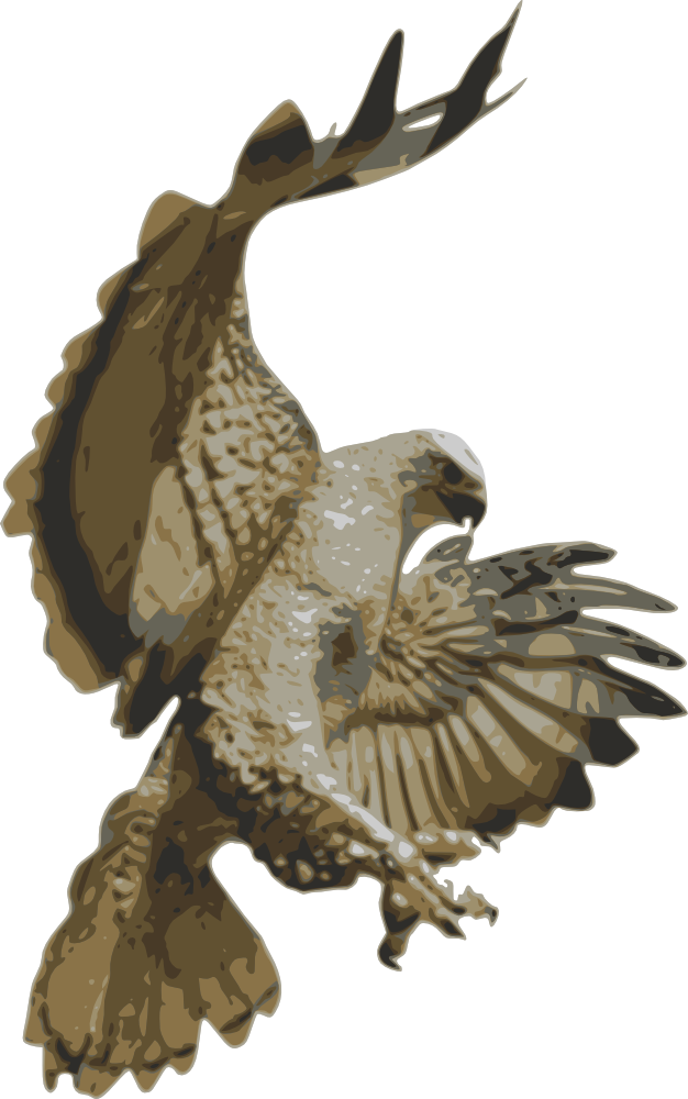 Falcon clipart golden hawk. Onlinelabels clip art pouncing