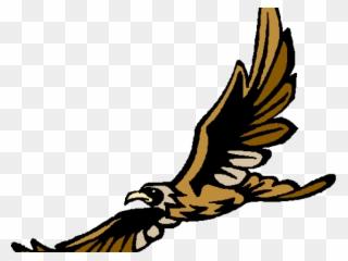 Peregrine soaring amelia earhart. Falcon clipart golden hawk