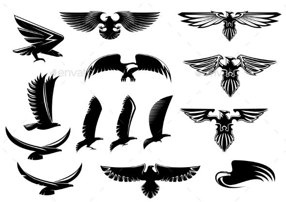 Eagle and hawk birds. Falcon clipart hand